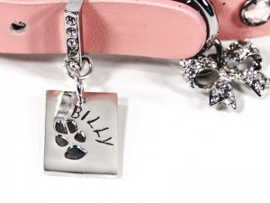 Rectangle Paw Print Small Pendant
