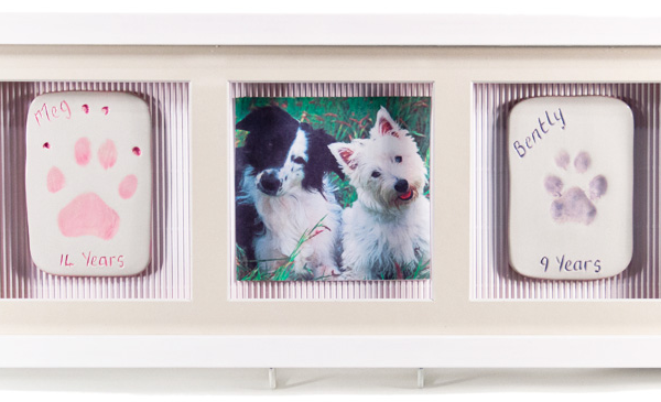 Two Single Ceramic Paw Print Impressions with Photo