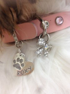Roxy Dog Tag Close up