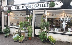The_Flower_Gallery_2